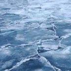 До 15 апреля в Петербурге введен запрет выхода на лед